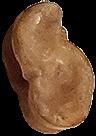 bikkel-23-groot
