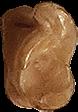 bikkel-25-groot
