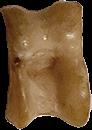 bikkel-8-groot